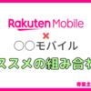 【デュアルSIM】楽天モバイルと相性抜群のおすすめ格安SIMはコレだ!