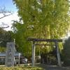 【和歌山】高野参詣道「三谷坂」の起点、大イチョウが美しい丹生酒殿神社(かつらぎ町・御朱印)