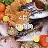4月の旬の魚介類