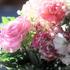 卒業式の薔薇