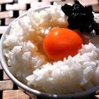 魚屋さんに聞いた、しけった焼き海苔で作る「海苔の佃煮」が頼もしいご飯のお供に【米好きに朗報】