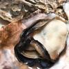 冬の絶品!兵庫県坂越産の牡蠣。この旨さはハンパないっ!