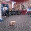 いいね:プラハ旧市街広場のマリア記念柱再建  [UA-125732310-1]