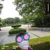 栃木県中央公園~6月2日~