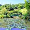 津市でバラ園 @レッドヒル・ヒーサーの森 by 赤塚植物園