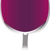 赤ワイン人気の理由は健康効能にある!