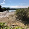 西浦池(和歌山県紀の川)