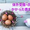 【不妊治療】はじめての体外受精・かかった費用(ショート法・新鮮初期胚移植)