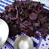 梅干しワークショップ 赤紫蘇を入れる