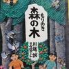 【絵本の原画展】川端誠さんの「木の精・モク」展