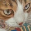 凄まじい画力の猫絵師・陳珮怡の個展に行ってきた!【感想・レビュー】