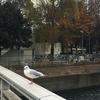 横浜④-櫻川橋