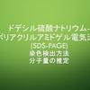 ドデシル硫酸ナトリウム-ポリアクリルアミドゲル電気泳動(SDS-PAGE)の方法・仕組み
