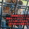 【姫路観光ならここ】姫路セントラルパークは大人も楽しめるのか?【待ち受ける猛獣たち】