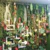 【本店3階】《デザイナーズ集団》『F5+』施工!『Green wall-Style』