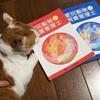 愛玩動物飼養管理士 試験がもうすぐです。