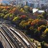 2020年 飛鳥山の秋(電車とコラボ)