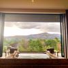 ひらまつ ホテルズ&リゾーツ 仙石原に宿泊 / エグゼクティブスイートでの極上の滞在