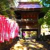 黒滝山登山(群馬県)|黒瀧山不動寺から観音岩経由の周回コース及び絶景をお伝えします!