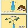 水栽培始めました