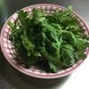 新メニュー!(笑)春菊とレトルトカレーのコラボレーションの極致!…かな?(笑)#加哩屋カレー