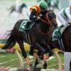 函館スプリントステークス 予想 消せる人気馬 買いたい穴馬