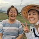 四国歩き遍路 女一人旅 in 2016