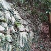 神無月の十 / 立花山へ