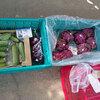 野菜直売会