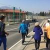 ハーフマラソンコース試走会(練習会)