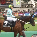 ryo-tanの競馬ブログ