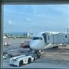 【条件付き運航】伊丹門限問題に直面した場合に起こりうる事態をA350乗り得路線とともに味わうフライト!