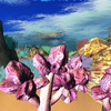 生態系を知り知恵を蓄えよう。 ナマコとサンゴ礁の生き様を覗いてみたよ