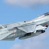 """1/72 F-14A+ """"イスラエル空軍"""""""