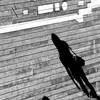 Picture of the shadow