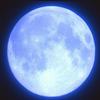 ✨Blue Moon