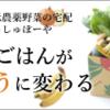 ギフト百花特集 No.29