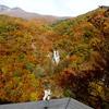 日光霧降ノ滝の紅葉を撮りに行ってきました。
