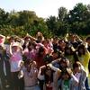 2016 河合果樹園みかんのオーナー収穫祭