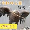 【レポ#21.5】千葉市動物公園(2021/3/4)の見どころまとめ