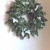 ギンドロのクリスマスリース