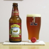 SIERRA NEVADA 「CELEBRATION FRESH HOP IPA」