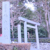 鈴鹿旅(前編)椿大神社と鈴鹿の茶畑