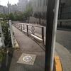 最後は戸山為夫的坂路調教でしめる。