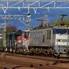 第1508列車 「 珍ドコ編成!ヨ8000形の付いた配給列車を狙う 」