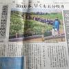 静岡県下田市 水仙まつり 開花状況をライブカメラでチェック!!