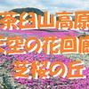 芝桜の絨毯が広がる天空の楽園、茶臼山高原「芝桜の丘」 <愛知県・豊根村>