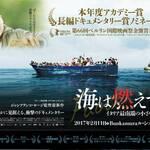 映画「海は燃えている~イタリア最南端の小さな島~」難民の死体のシーンは監督の葛藤の結果のようです
