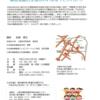 平成29年3月3日の入間市障害者基幹相談支援センター事業 福祉学習会について