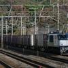 11月14日撮影 東海道線 大磯~二宮間 平塚~大磯間 貨物列車 3075ㇾ 2079ㇾを撮影
